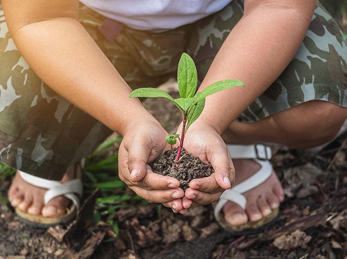 L'environnement, un engagement fort d'HABA PRO